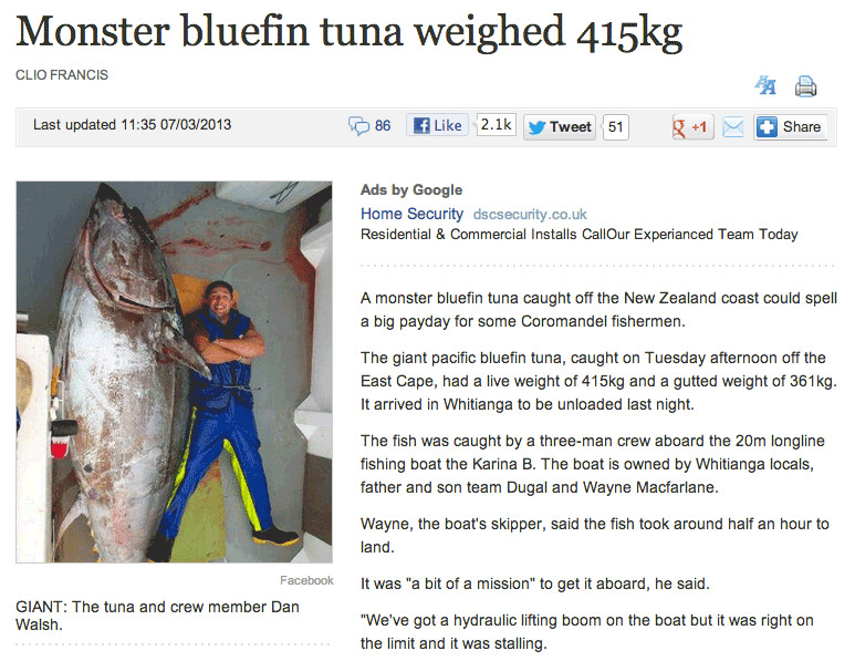 Monster Bluefin Tuna Weighed 415kg