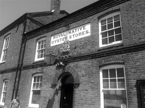 Royal Native Oyster Stores