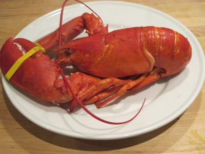 Lobster cooked at home
