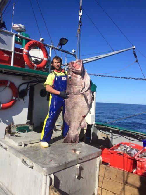 NZ commercial fishing fishing foul weather gear pants