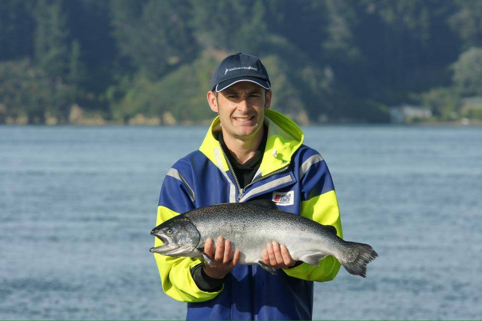 Manager from New Zealand King salmon farm holding a salmon