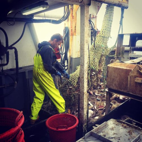 Commercial Fisherman in Cornwall landing his catch in fishing oilskins