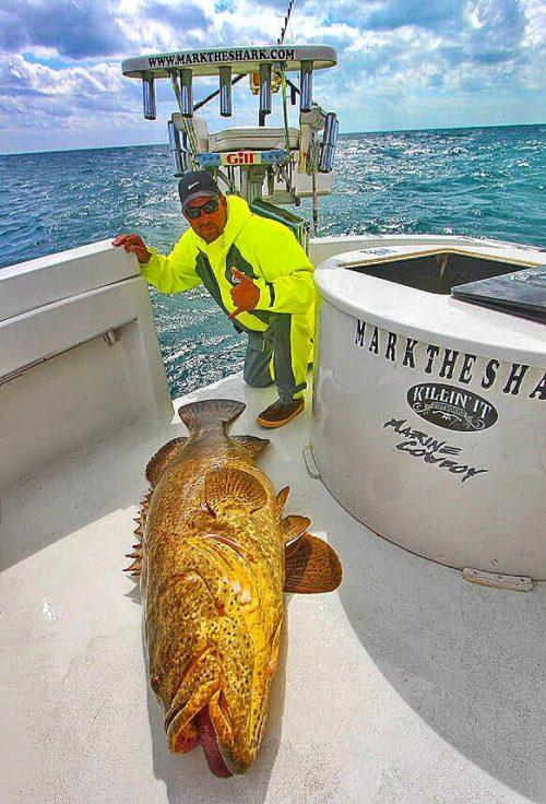 Sports fishing performance foul weather gear