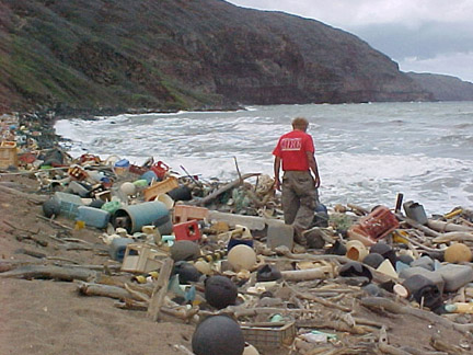 marine debris on beach