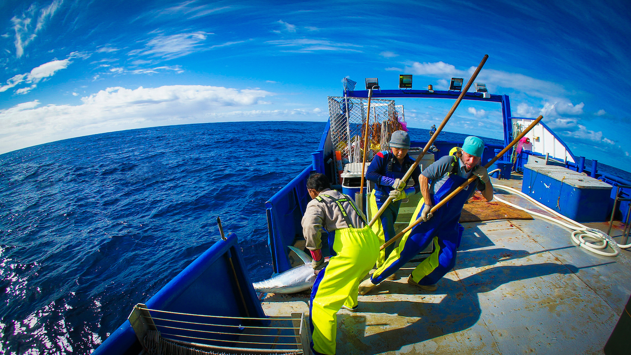 Commercial tuna fishing in wet weather gear in Australia