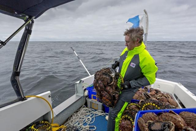 Stormtex 203 wet weather jacket australia